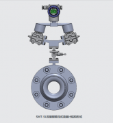HH-02防腐型双量程差压式流量计